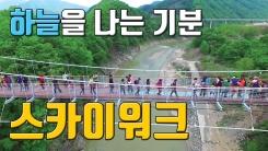 [자막뉴스] '새로운 관광명소'...점점 느는 스카이워크