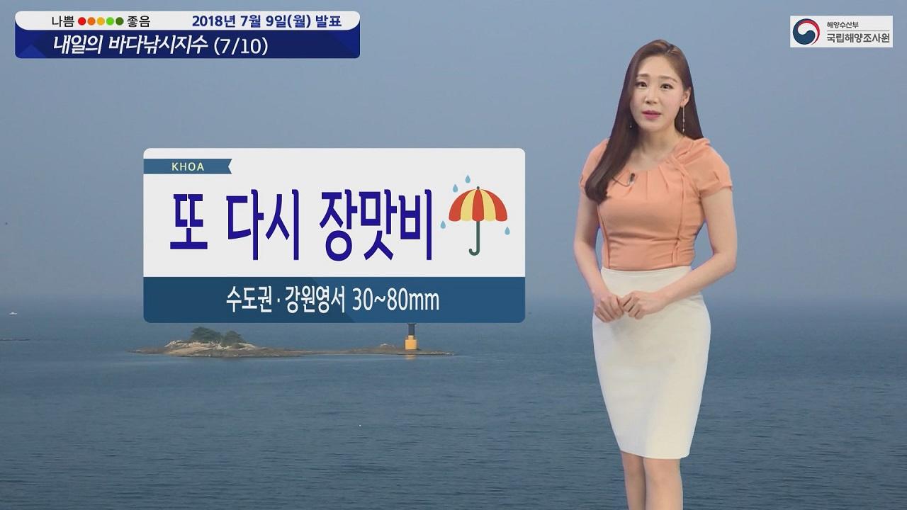 [내일의 바다낚시지수] 7월10일 장마정선 영향 비 내려 일부지역 낚시 가능하나 안전 주의