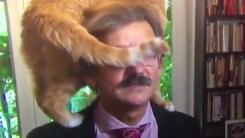 [지구촌생생영상] 고양이가 진단한 눈앞이 캄캄한 정치 상황?