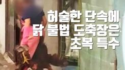 [자막뉴스] 허술한 단속에 닭 불법 도축장은 초복 특수