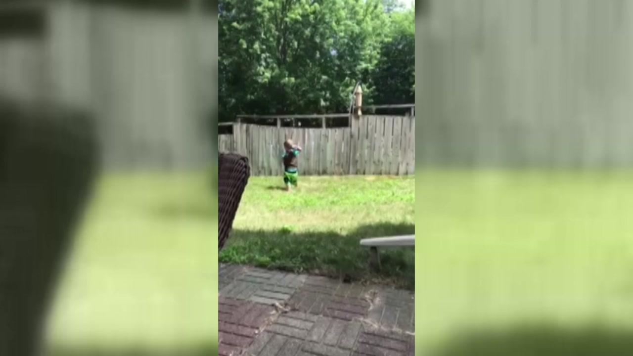 [영상] 이웃집 강아지와 공놀이 친구 된 '2살 꼬마'