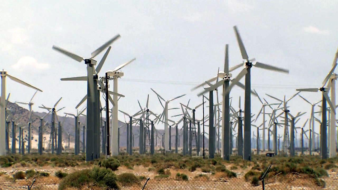 재생에너지로 만든 '착한 전기'...기업들이 사서 쓴다
