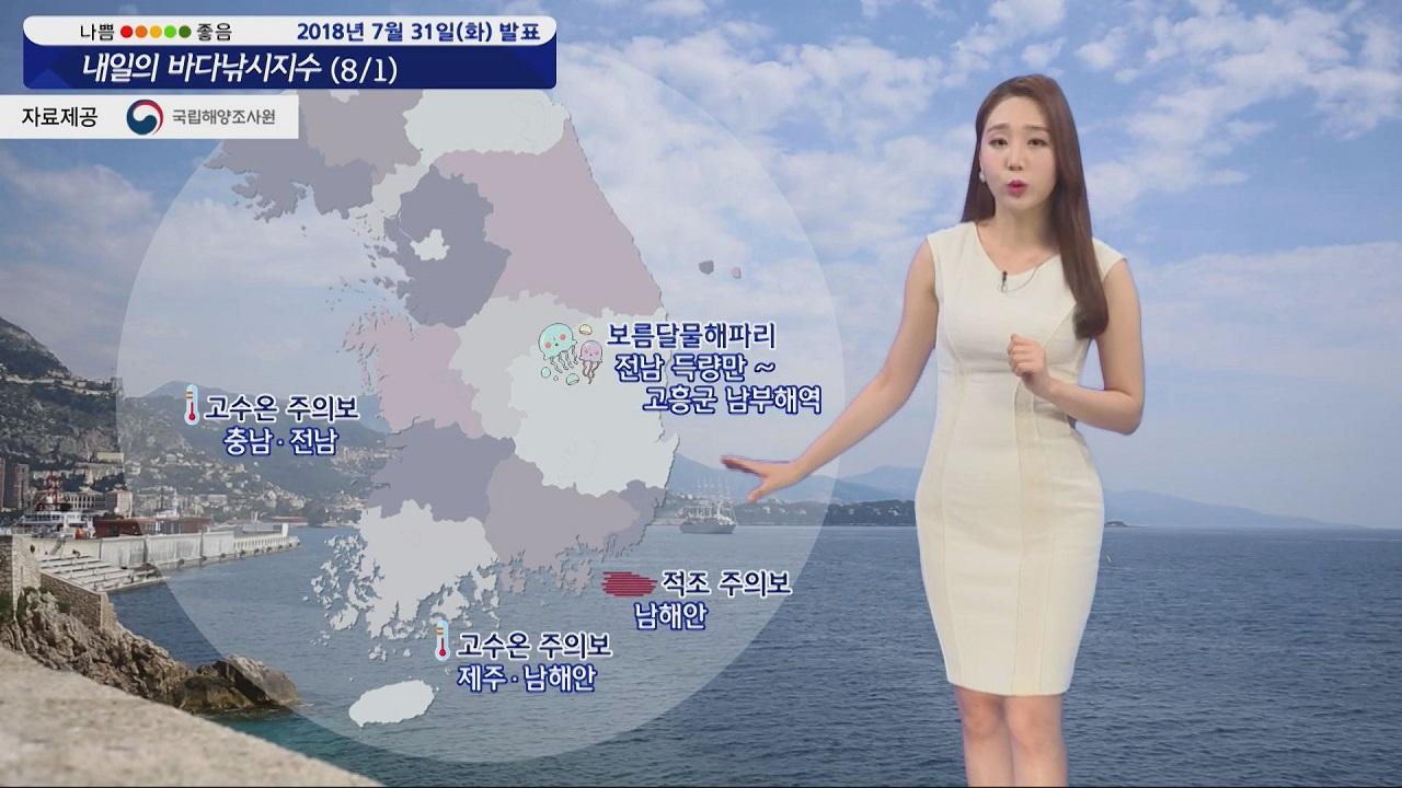 [내일의 바다낚시지수] 8월1일 고수온,적조,해파리 극성 제주 강풍 먼바다 풍랑예비특보