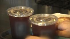 [취재N팩트] 커피전문점 일회용컵 단속 시작됐지만...현장 혼선