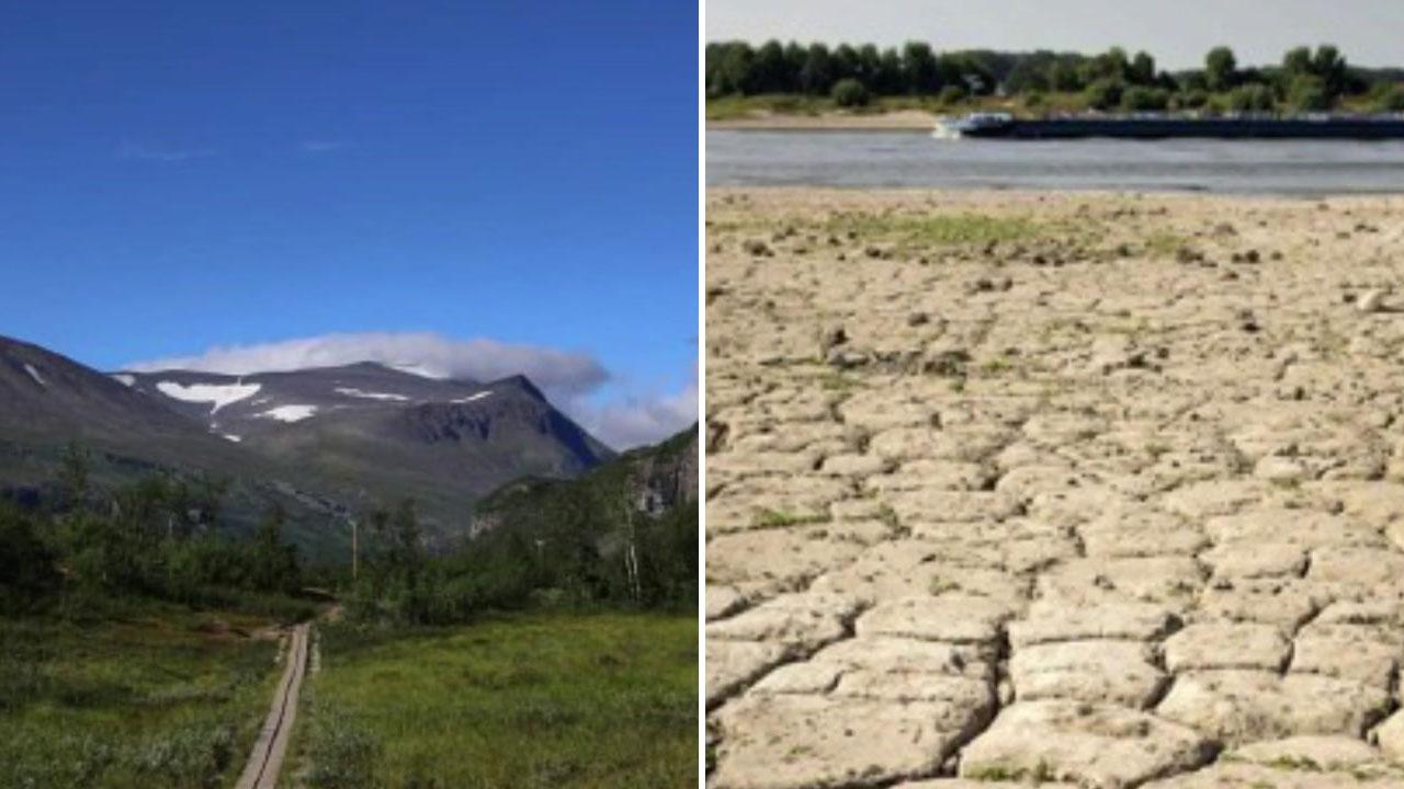 북극에 숲 생기고, 강 말라붙고...절절 끓는 지구촌