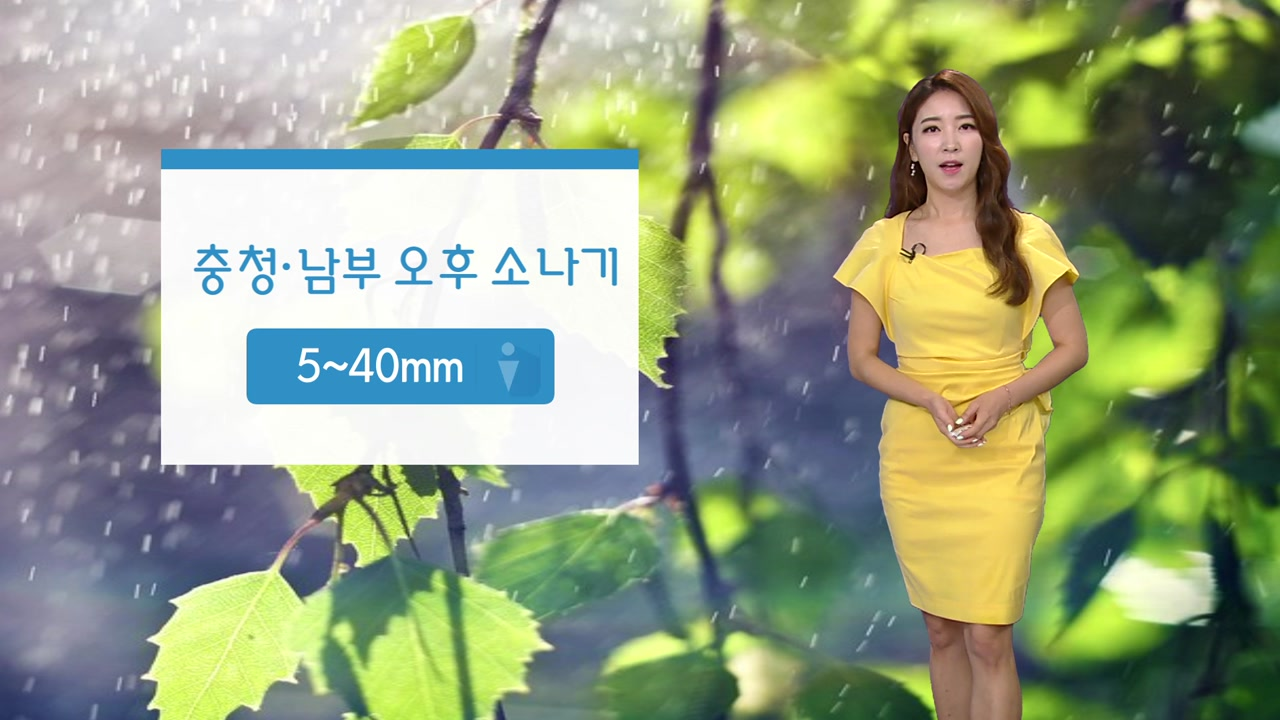 [날씨] 주말에도 찜통더위 계속...충청·남부 소나기