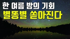 [자막뉴스] '한여름밤의 쇼' 하늘에서 별이 쏟아진다