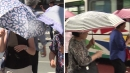 [날씨] 말복 서쪽 폭염, 남해안·동해안 비에 주춤