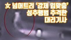 [자막뉴스] 女 넘어트려 '강제 입맞춤'...성추행범 추격한 대리기사