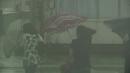 [태풍경로] 19호 태풍 '솔릭'...목요일쯤 한반도 ...