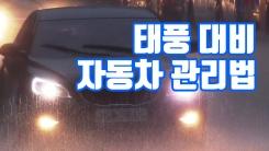 [자막뉴스] 태풍 대비 자동차 관리법