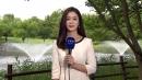 [날씨] 주말 늦더위, 충청 이남 비...내일 전국 비