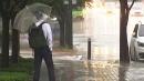 [날씨] 출근길 국지성 호우...충청 200mm↑, 돌풍·...
