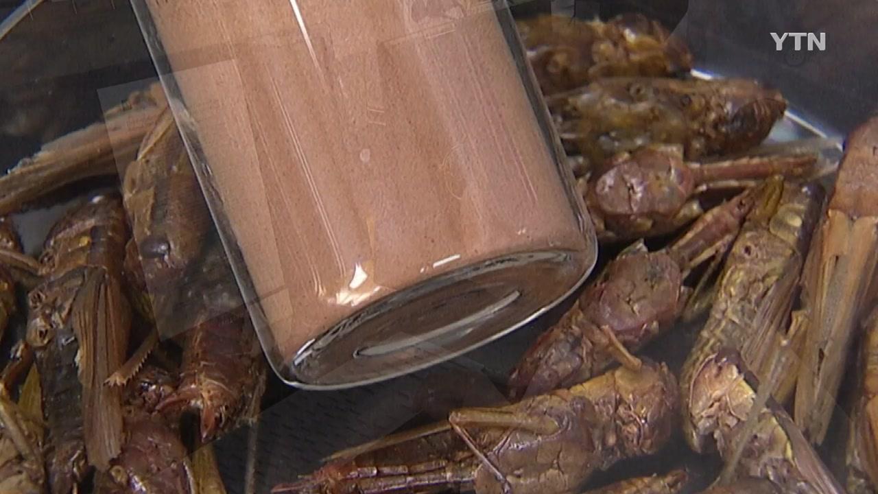 곤충 추출물, 비알코올성 지방간 개선 효과 입증