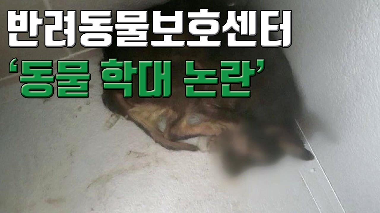"""[자막뉴스] 반려동물보호센터 동물학대 논란...""""유기견 냉동고에 넣어 폐사"""""""