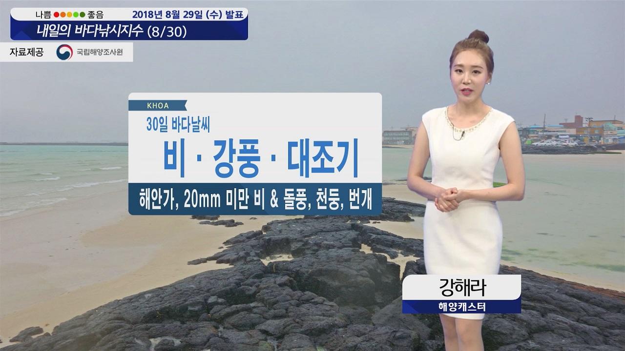 [내일의 바다낚시지수] 8월30일 비와 강풍, 대조기 영향 수위 높아 고립사고 유의해야