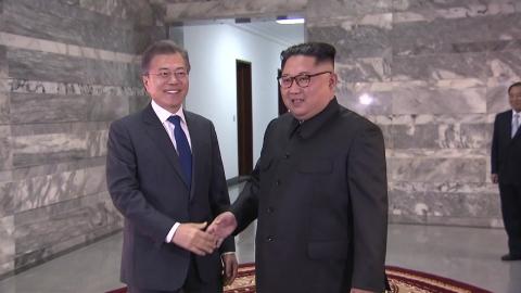 """청와대, 내달 대북 특사 파견...""""정상회담 논의"""""""