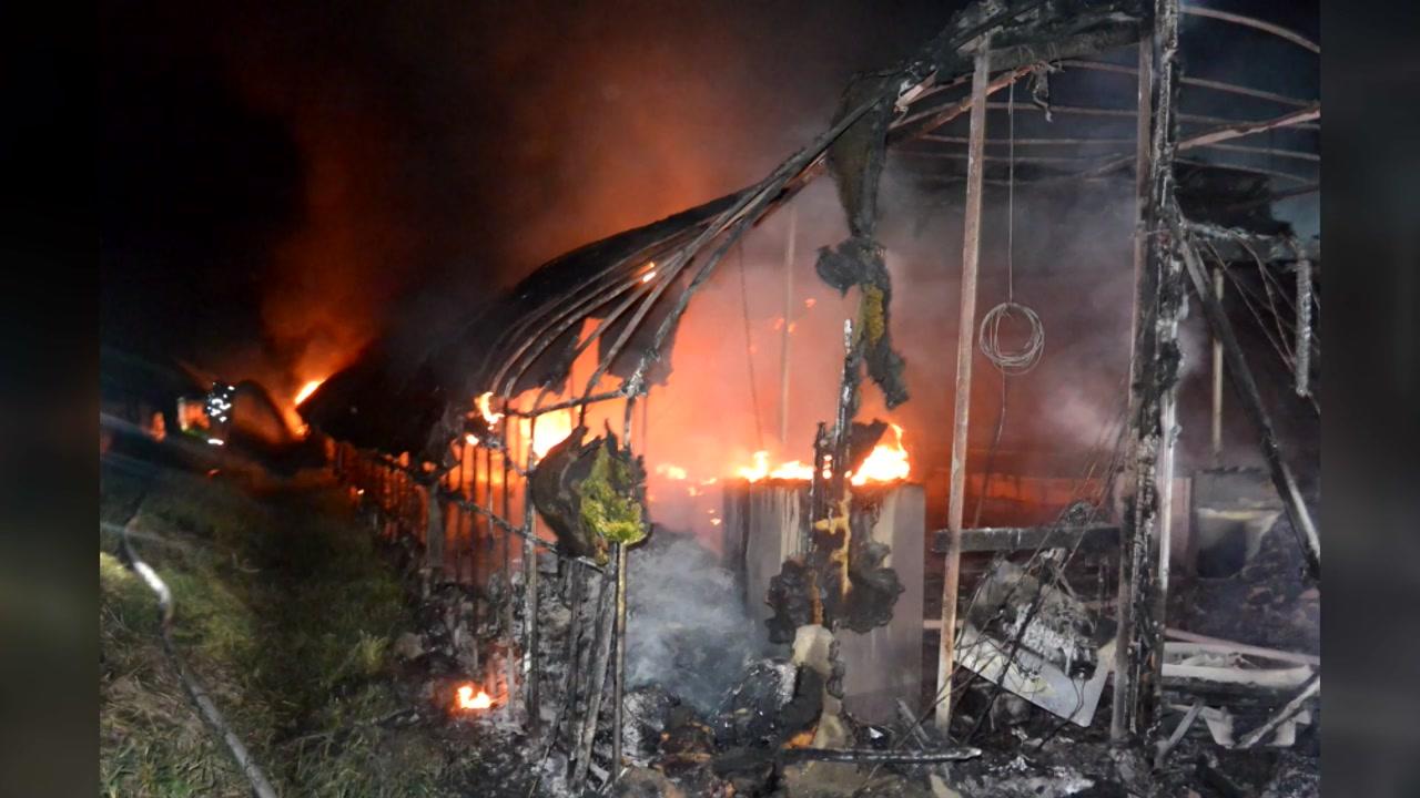 충남 청양군 양계장 화재...닭 2천300마리 폐사