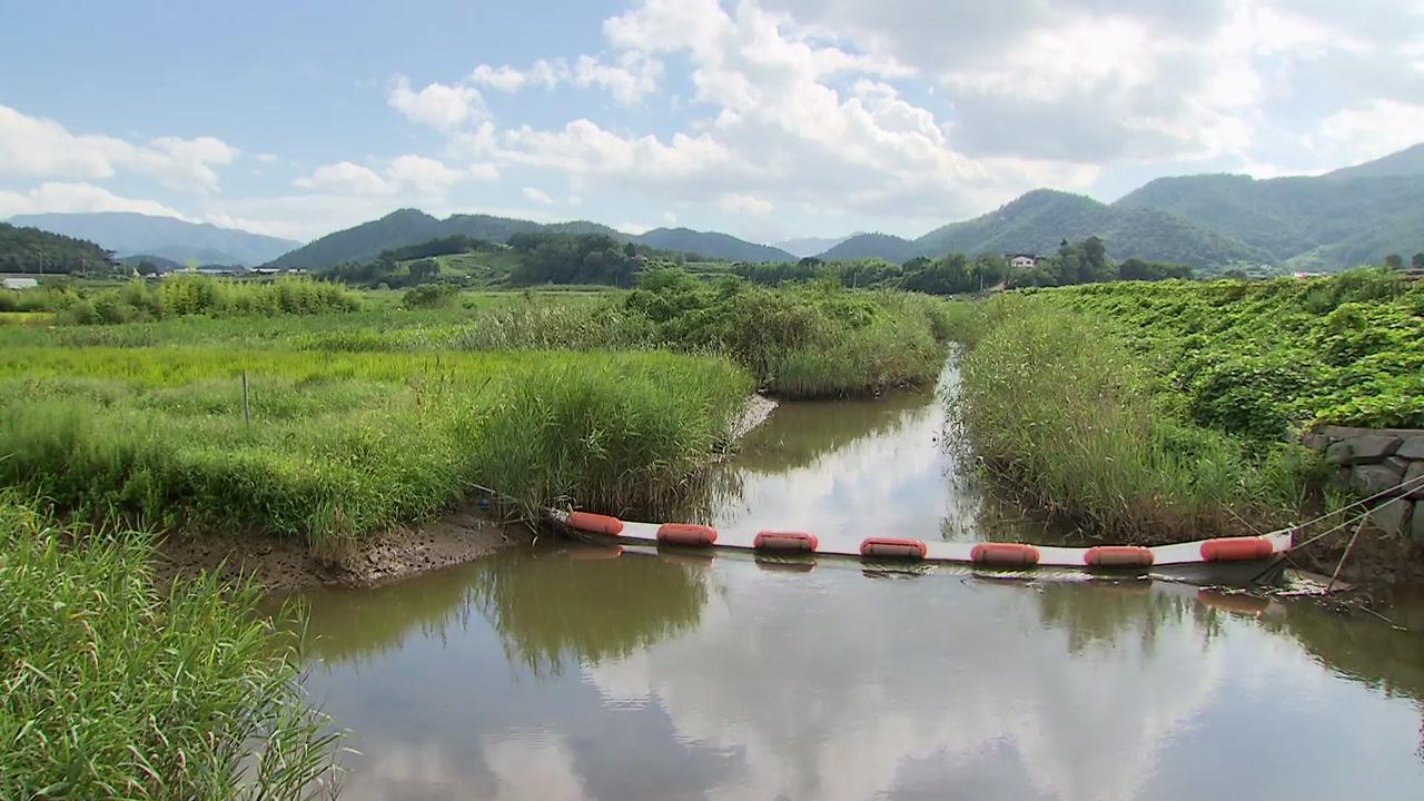 멸종위기종 서식 습지...태양광 발전 논란