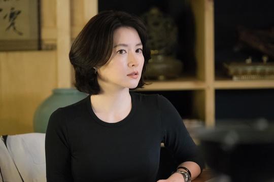 이영애, SBS '가로채널' 특별출연...크리에이터 변신 예고