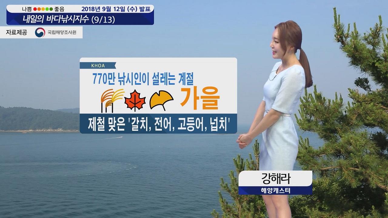 [내일의 바다낚시지수] 9월13일 남해안 제주 바람 강해, 나머지 해역 무난한 출조 예상