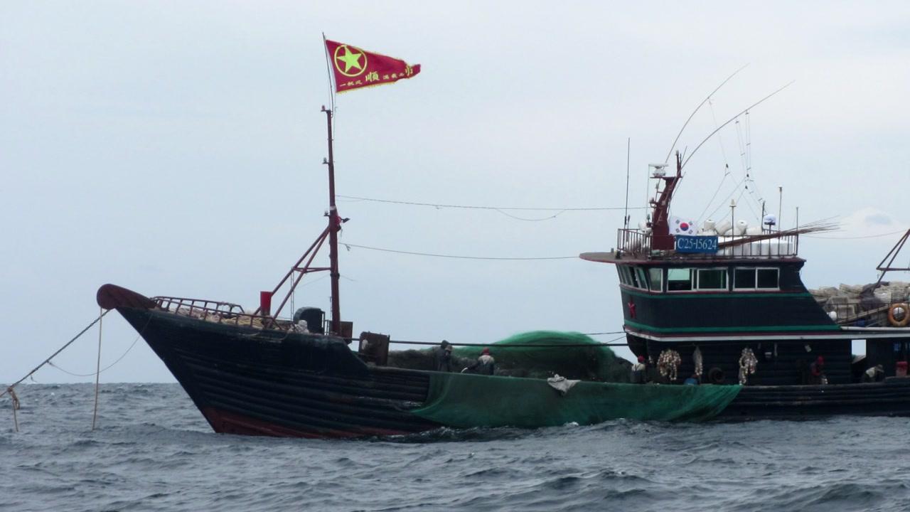 '불법 오징어 조업' 중국 어선 잇따라 적발