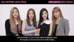 블랙핑크, 11월 데뷔 첫 서울 단독 콘서트 개최