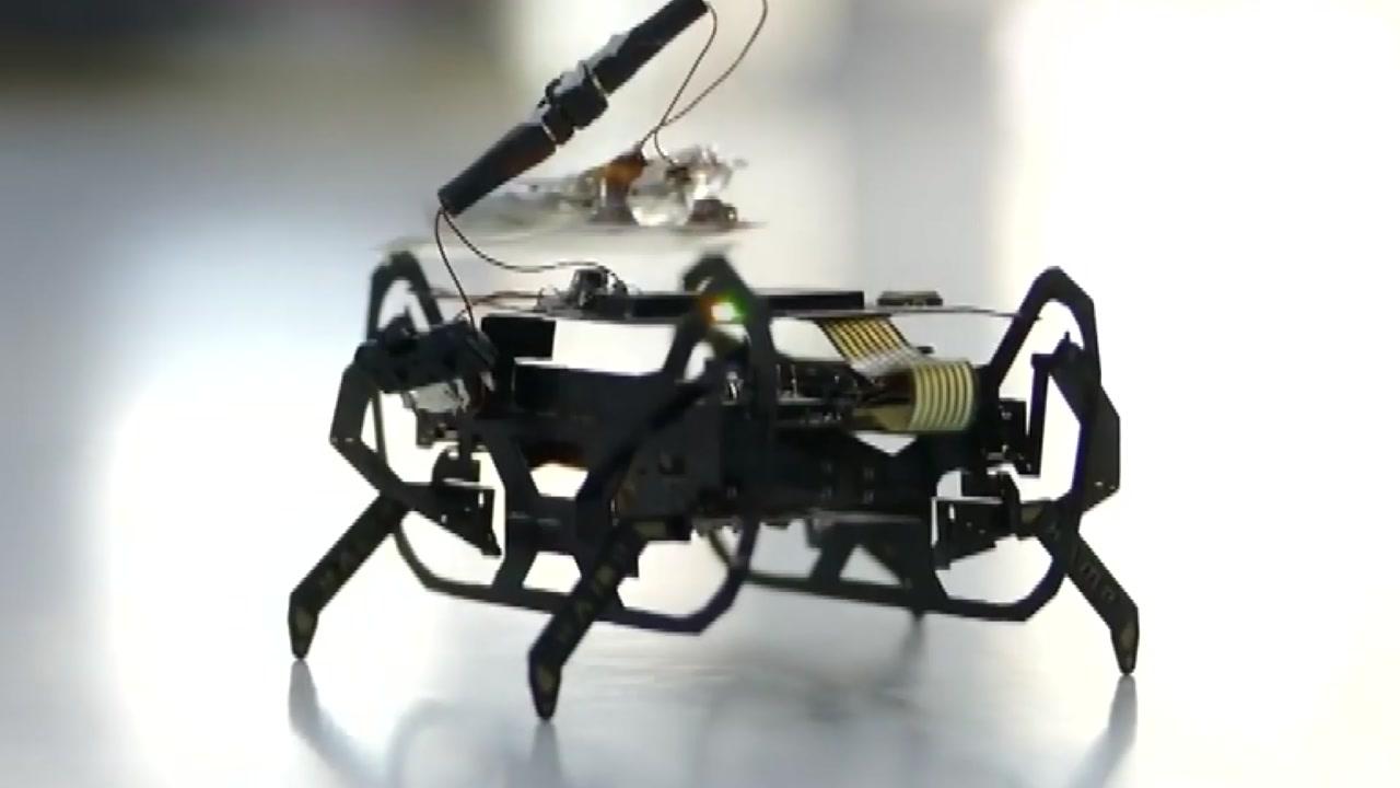 비행기 엔진 수리하는 '딱정벌레' 로봇