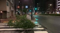 """""""전동차 운행도 중지""""...태풍 '짜미' 휩쓸고 간 도쿄"""