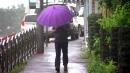 [날씨] 내일부터 태풍 '콩레이' 영향권...700mm ...