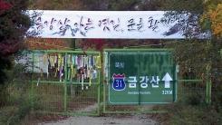 내금강 가는 길, 국도 31호선 복원 추진
