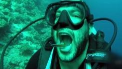 '바닷속 치과의사'...입 벌리면 청소해주는 물고기들