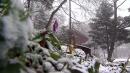 [날씨] 설악산에 첫눈, 중청봉 7cm...지난해보다 ...