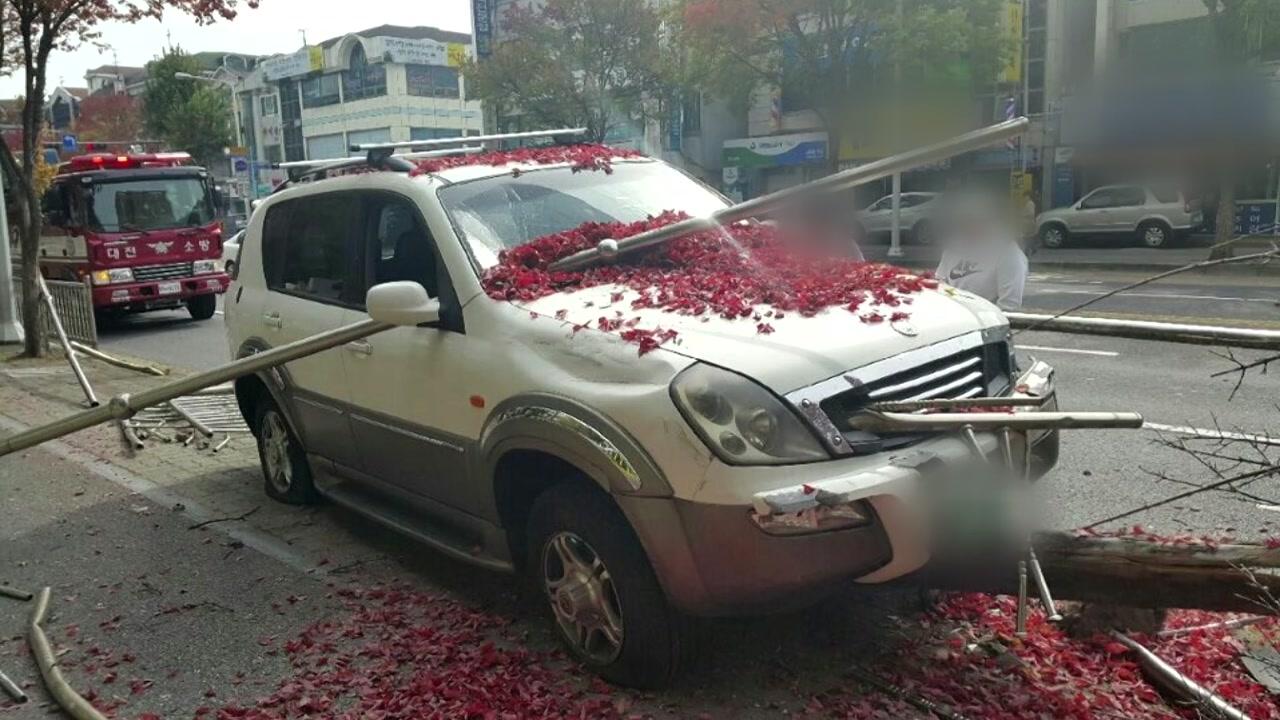 대전에서 SUV가 인도로 돌진...울타리 등 파손