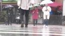 [날씨] 추위 몰고 오는 가을비...돌풍·벼락·우박