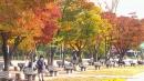 [날씨] 쌀쌀한 휴일, 요란한 가을비...벼락·우박
