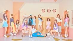 美빌보드, 아이즈원 데뷔 집중조명…12인 가능성 칭찬