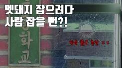 [자막뉴스] 학교에 날아든 총알...'멧돼지' 잡으려다가?
