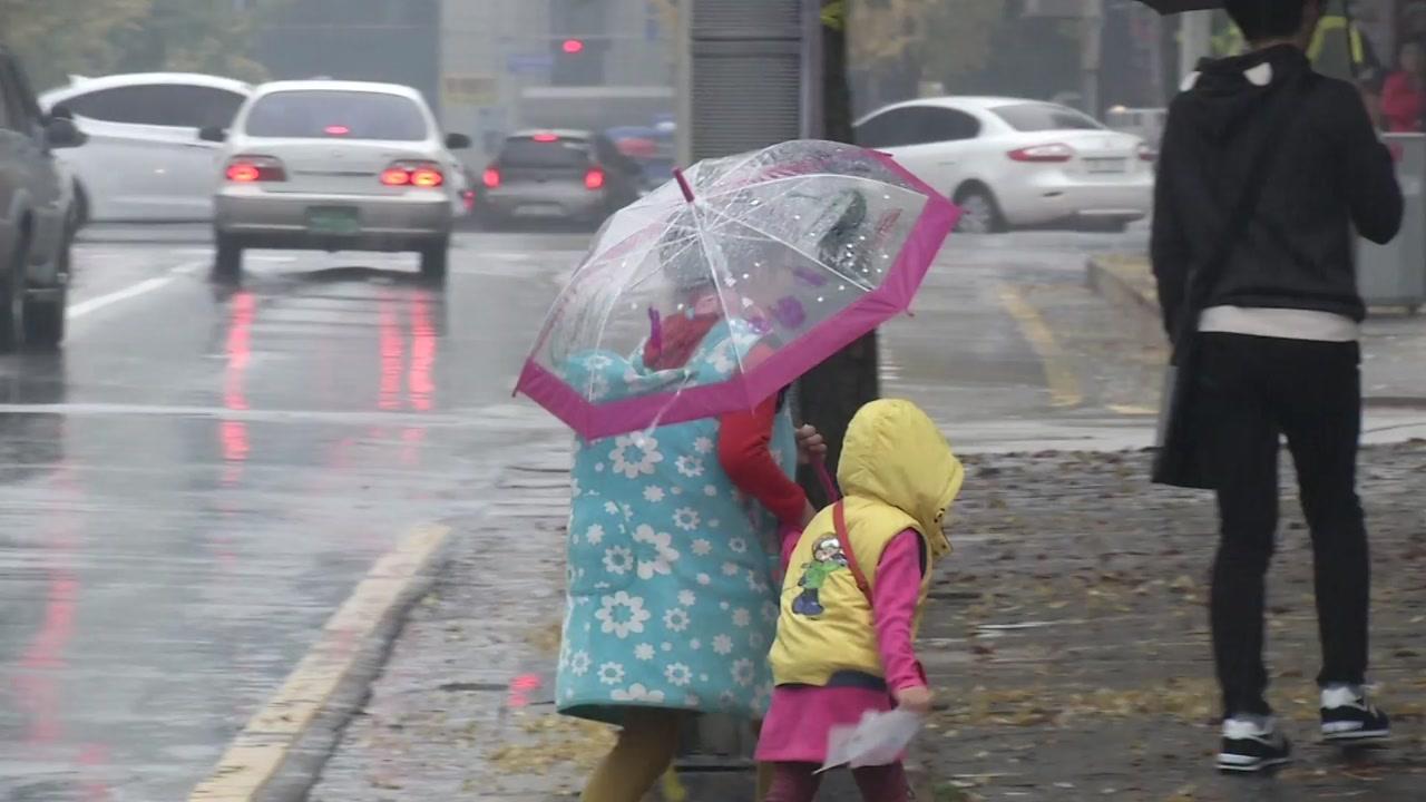 [날씨] 먼지 씻어주는 요란한 비...해안·산간 강풍예비특보