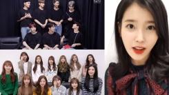 """""""좋은 결과 있길""""...BTS·아이유·아이즈원, 수험생 응원"""