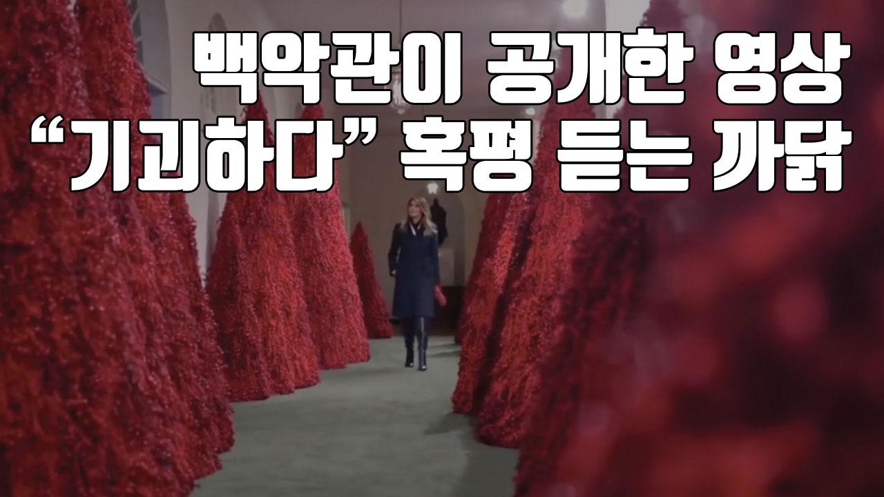 """[자막뉴스] 백악관이 공개한 영상, """"기괴하다"""" 혹평 듣는 까닭"""