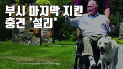 [자막뉴스] 잘 가세요, 주인님!...부시 마지막 지킨 충견 '설리'