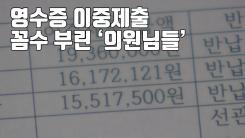 [자막뉴스] '영수증 이중제출'...꼼수 부린 '의원님들'
