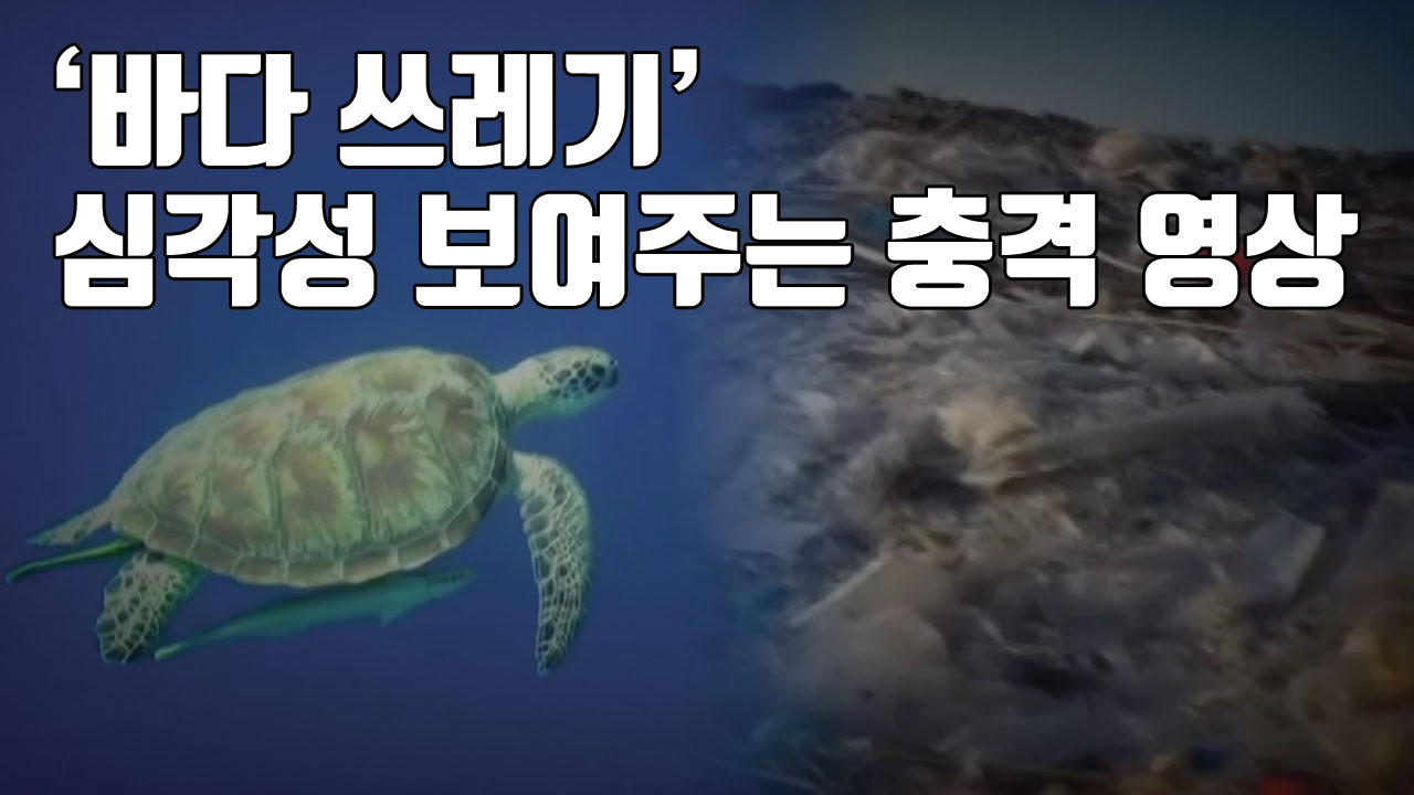 [자막뉴스] '바다 쓰레기' 심각성 보여주는 충격 영상