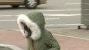 [날씨] 북극 한파 맹위, 중부 체감 -15℃...서해안 눈