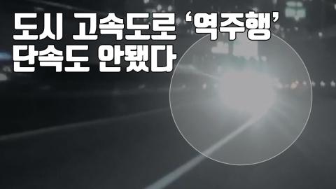 [자막뉴스] 도시 고속도로서 '아찔한 역주행'...단속도 안됐다
