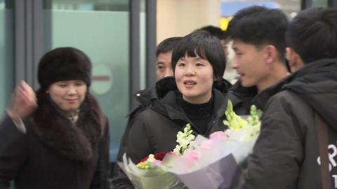 탁구 혼합복식 남북단일팀, 北 차효심 입국