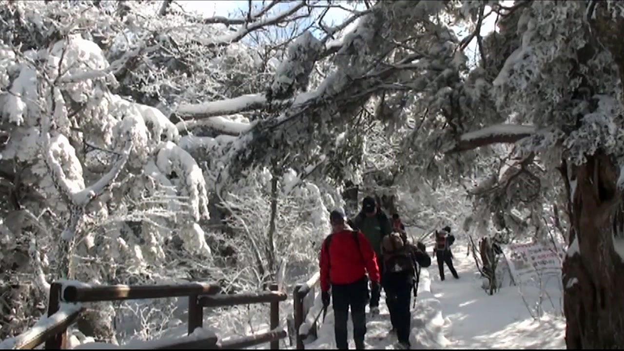 한 달 만에 다시 열린 국립공원 탐방로...설산 탐방도 가능