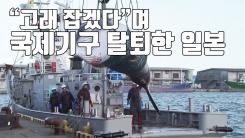 [자막뉴스] 日, 고래 잡겠다며 국제기구 탈퇴...뒷말 무성