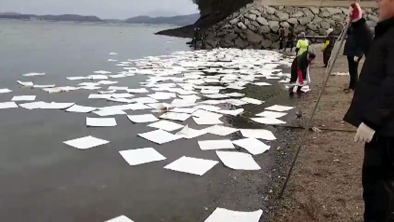 충남 홍성 죽도에 기름 유출...원인 조사 중